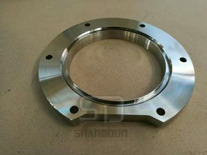 incoloy 810H flanges