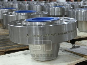 ASTM B564 flanges